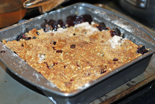 Cranberry crisp in baking tin by irieknit
